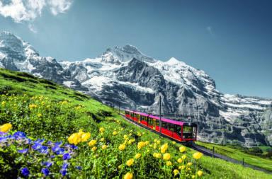 tren del Jungfrau